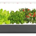 click grow smart garden 9 slimme binnentuin led verlichting companion app kweektuin indoor binnentuin review